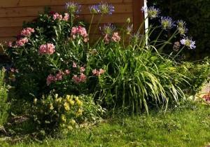 jardin paysagé - Gite Bouchard
